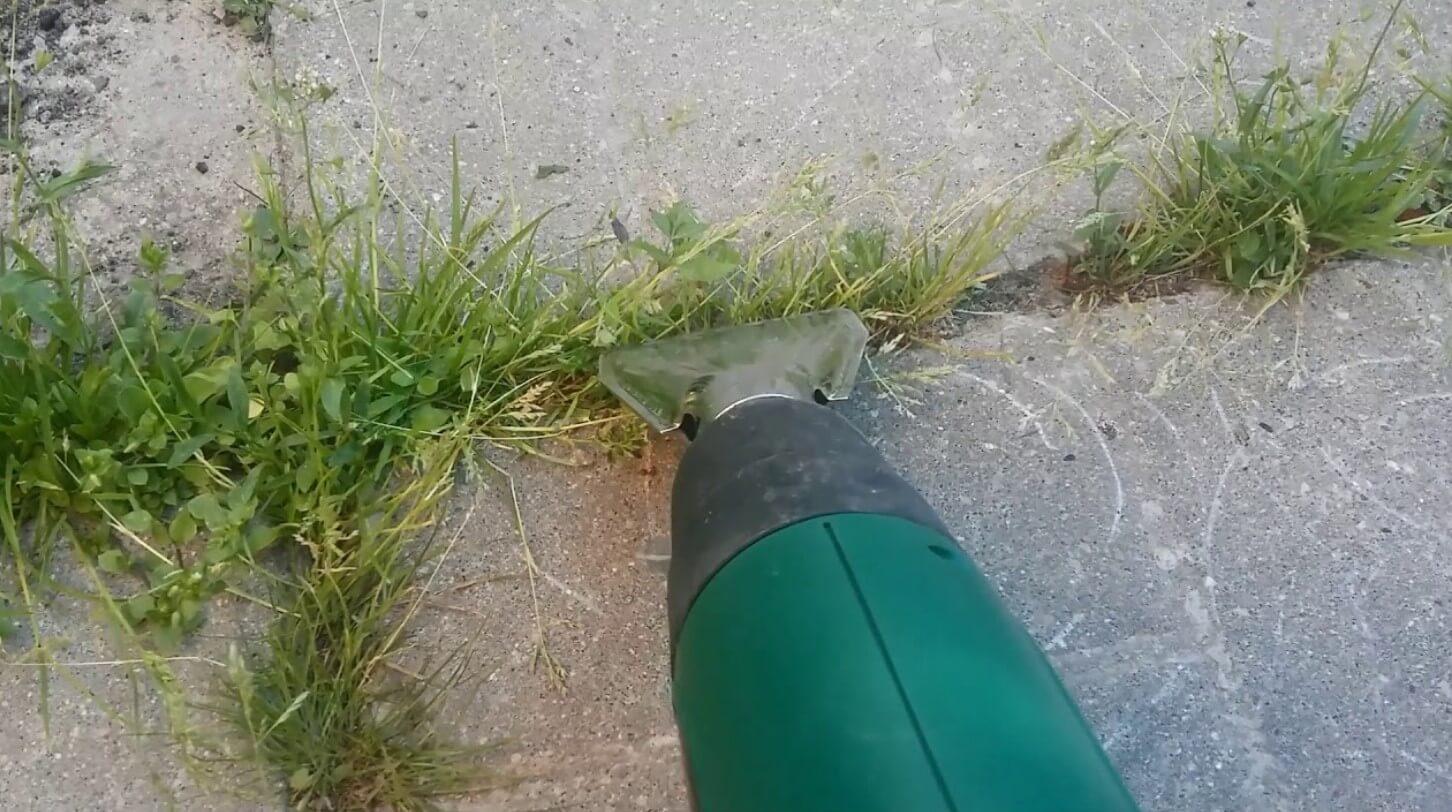 как избавиться от травы между тротуарной плиткой ФОТО